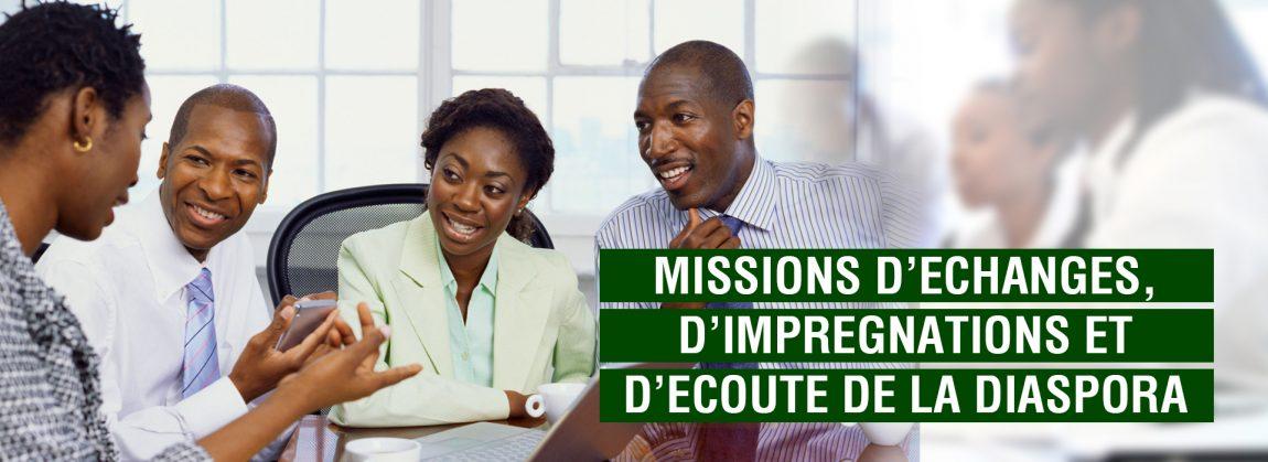 diaspora togolaise missions a